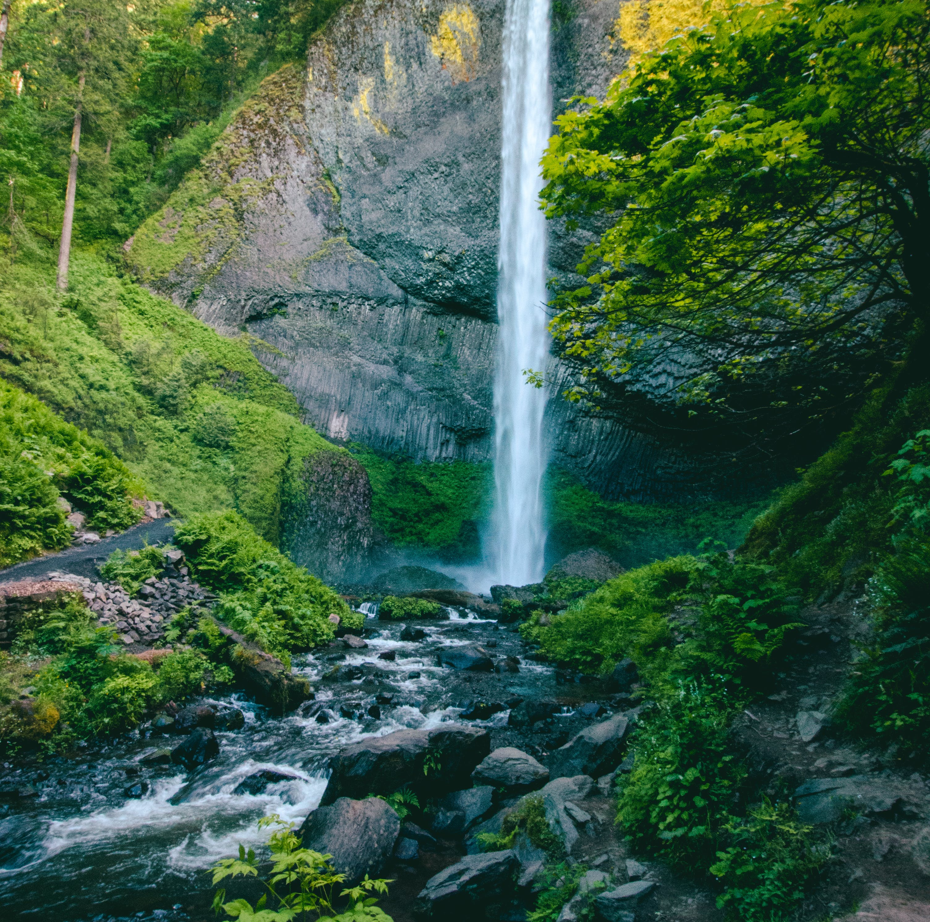 Kostnadsfri bild av anläggning, berg, falls, kaskad