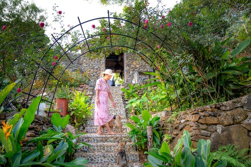 Full body of unrecognizable female in dress and straw hat standing on stone stairs with puppies surrounded green plants and blossom trees on sunny day