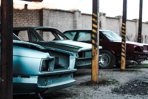 Imagine de stoc gratuită din abandonat, accident, automobil, cal sălbatic