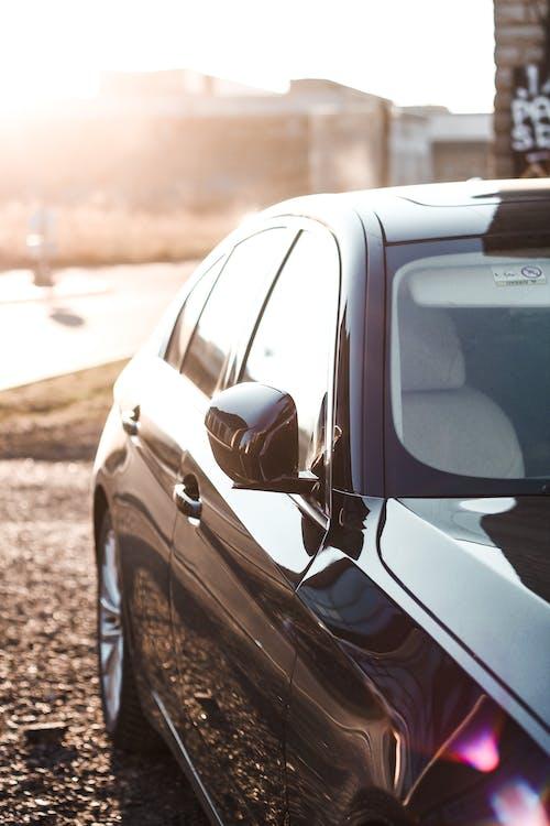 Imagine de stoc gratuită din auto, automobil, cal sălbatic, călătorie