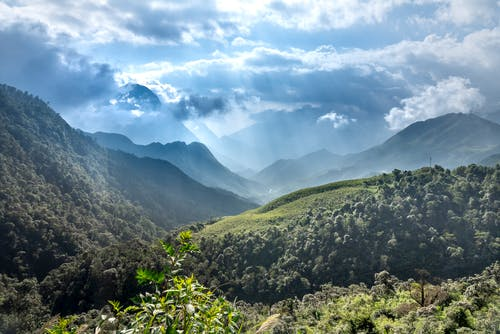 Spectacular view of high mountains with lush green trees growing under shiny sky with fluffy clouds in sunlight
