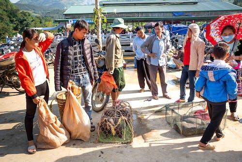 Ethnic vendors with pigs against buyers in bazaar
