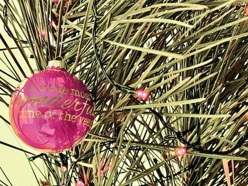 Kostnadsfri bild av jul, julbollar, julstämning