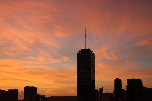 剪影, 城市, 天空, 市中心 的 免費圖庫相片