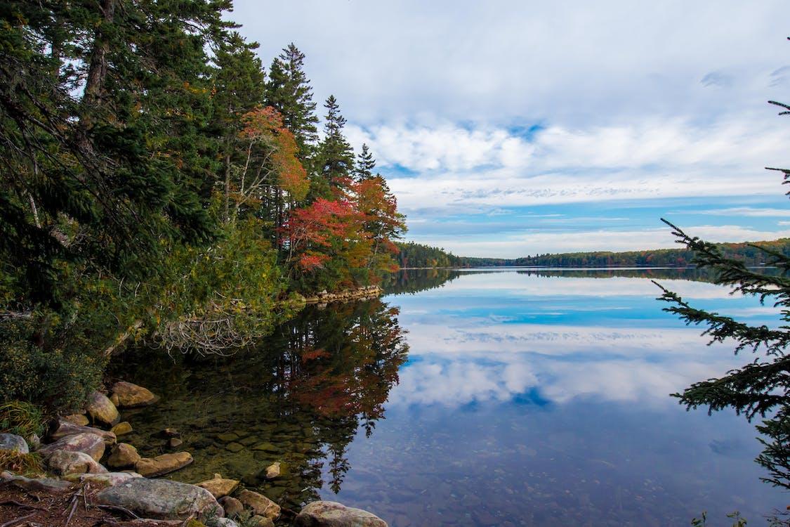 Photos gratuites de couleurs automnales, couleurs d'automne, eau
