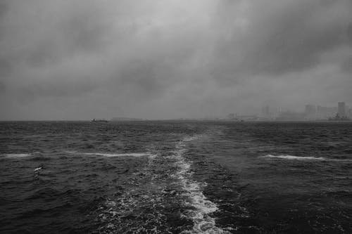 A Grayscale Photo of the Ocean