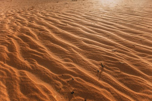 Brown Sand With Footprints