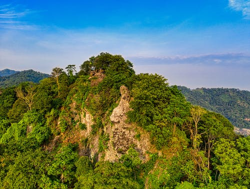 Rocky cliff covered with green foliage against blue sky