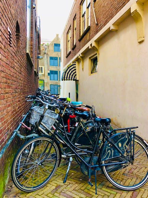 bisiklet, Flemenkçe, Hollanda içeren Ücretsiz stok fotoğraf