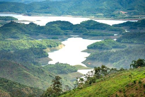 River flowing through green hills