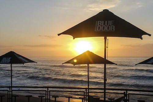 Free stock photo of morning sun, ocean, salt water