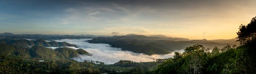Breathtaking panoramic landscape of mountains covered with lush green trees in wild valley against sunset sky