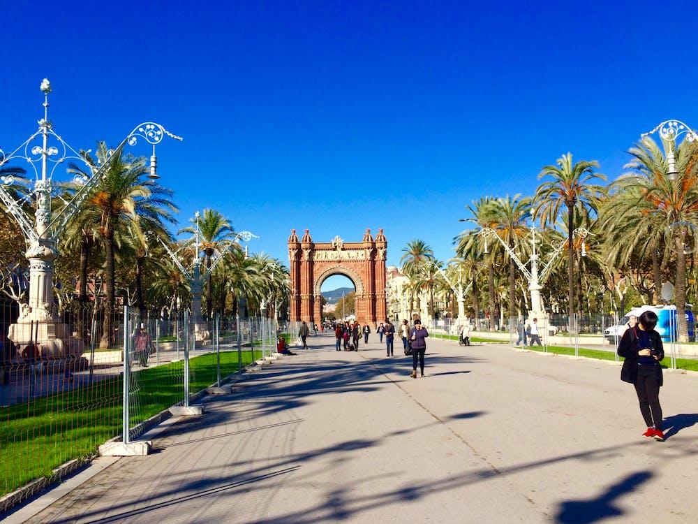 Free stock photo of barcelona, palm trees, spain