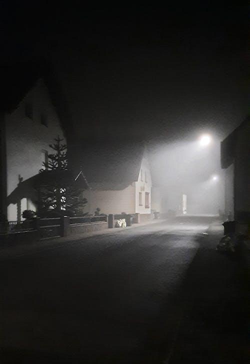 ミスト, 寂しい, 早朝の無料の写真素材