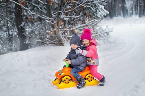 Photos gratuites de amusement, arbre, bois, bonheur