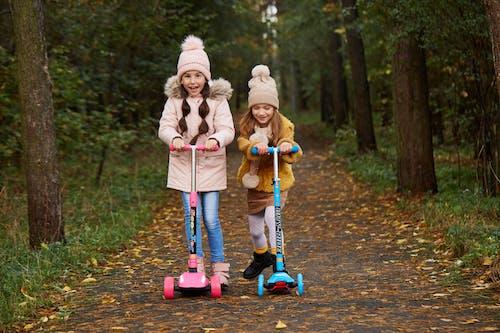 Photos gratuites de amusement, automne, bois, bonheur