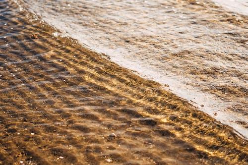 テクスチャ, ドライ, ビーチの無料の写真素材