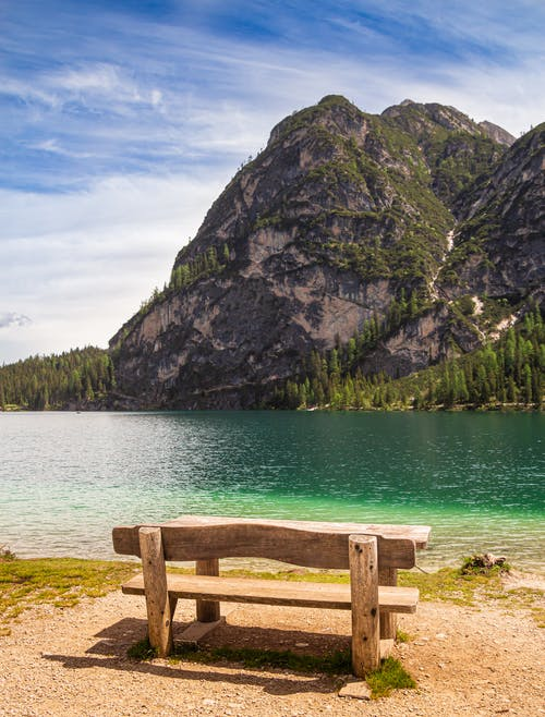 Brown Wooden Bench Near Body of Water