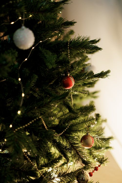 Close-Up Photo of Green Christmas Tree With Red and Silver Baubles