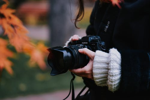 Crop photographer taking pictures in autumn