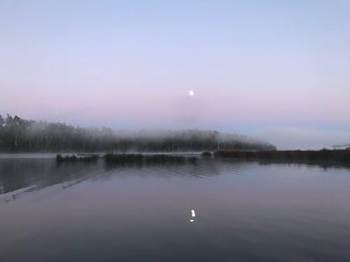 Free stock photo of Early morning fishing, tasmania