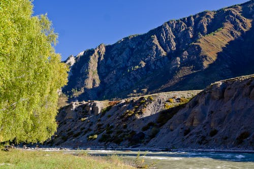 Free stock photo of алтай, горы, осень