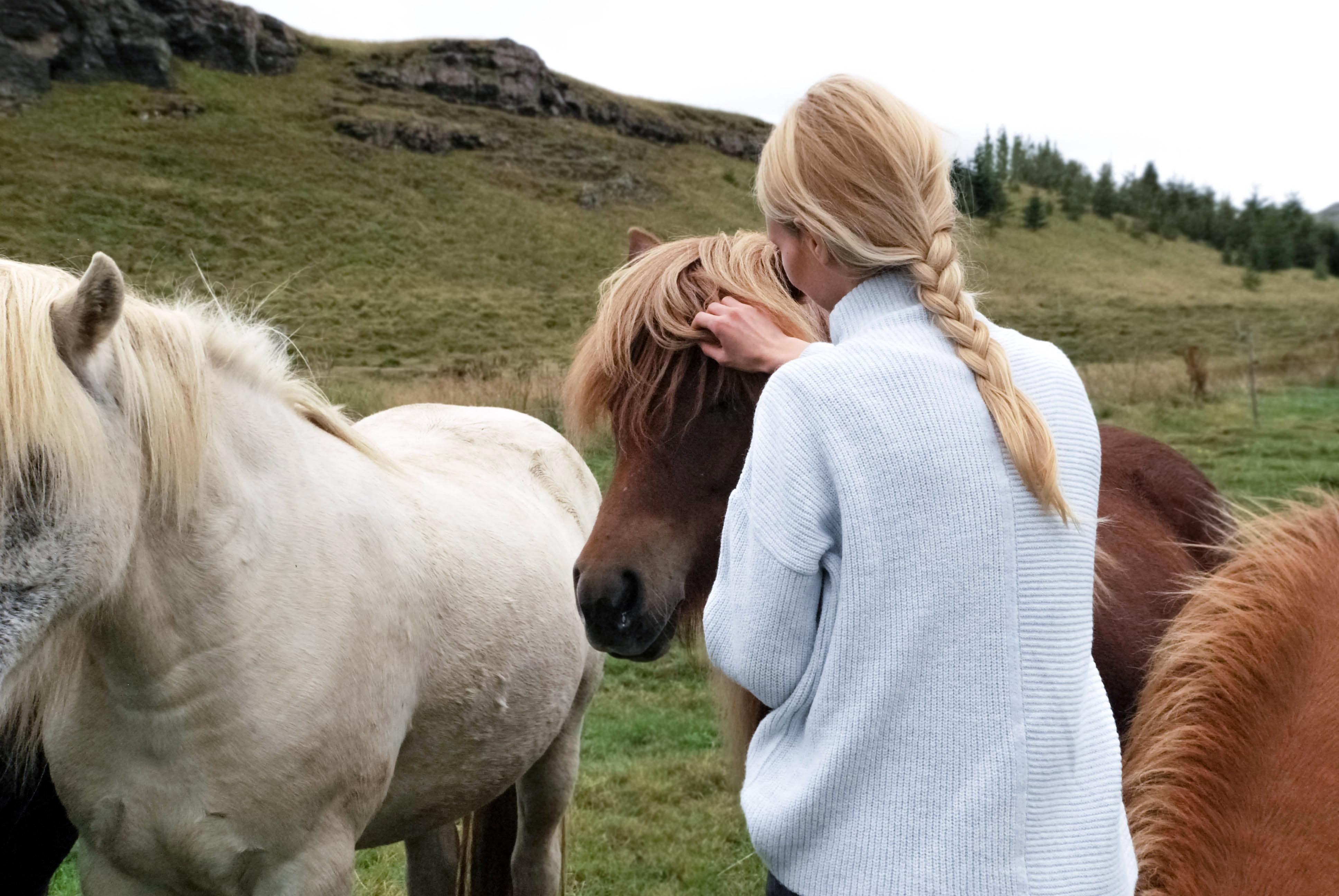 Woman Touching Horse