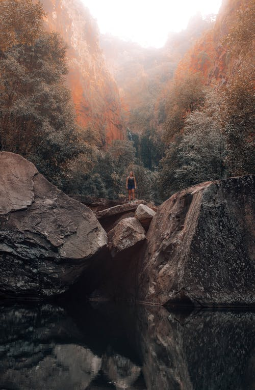 Foto d'estoc gratuïta de a l'aire lliure, aigua, arbre, barranc