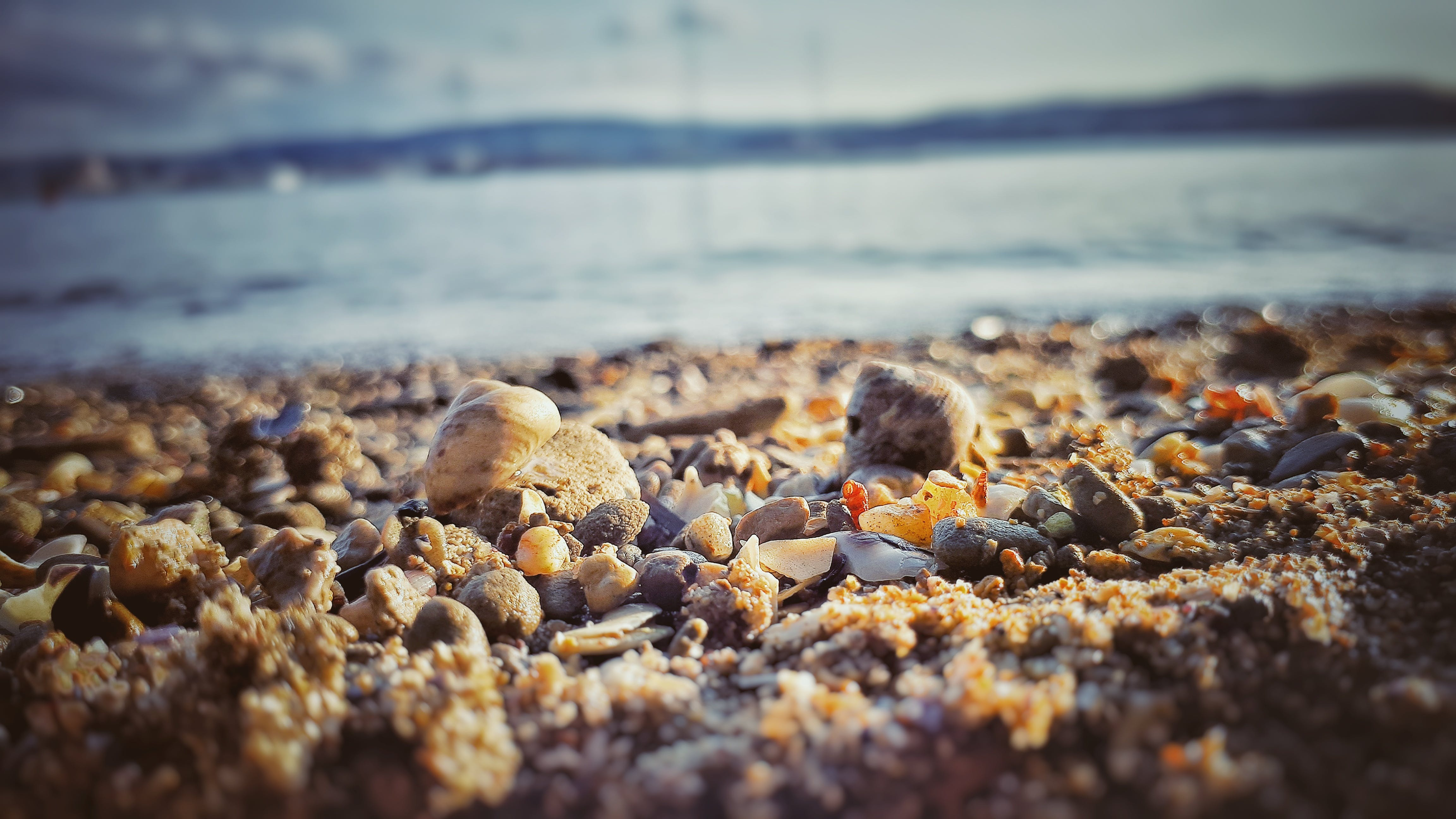 Brown Stones on Shore