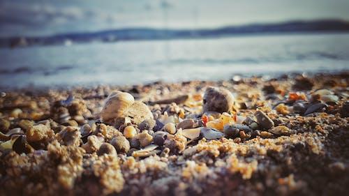 Ingyenes stockfotó hajnal, homály, homok, kövek témában