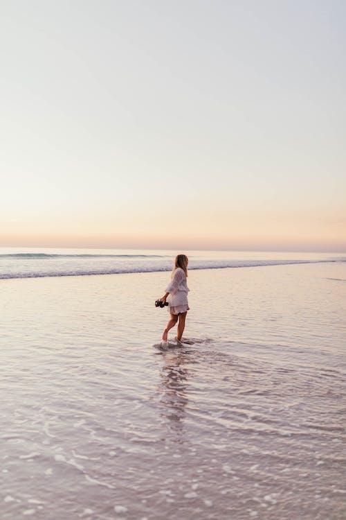 ビーチ, 人, 余暇, 夏の無料の写真素材