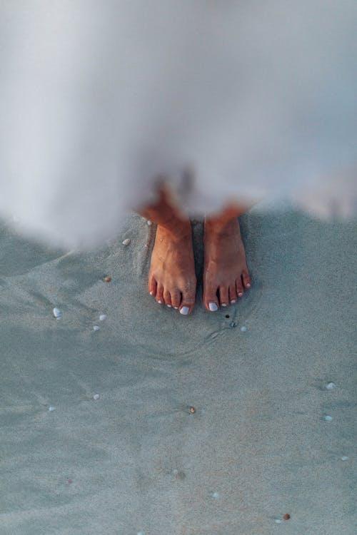 H2O, コールド, 人, 冬の無料の写真素材