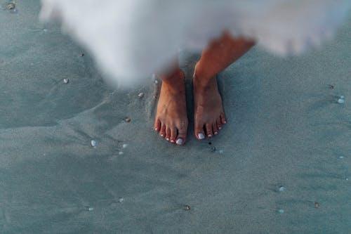 H2O, ビーチ, プール, 人の無料の写真素材