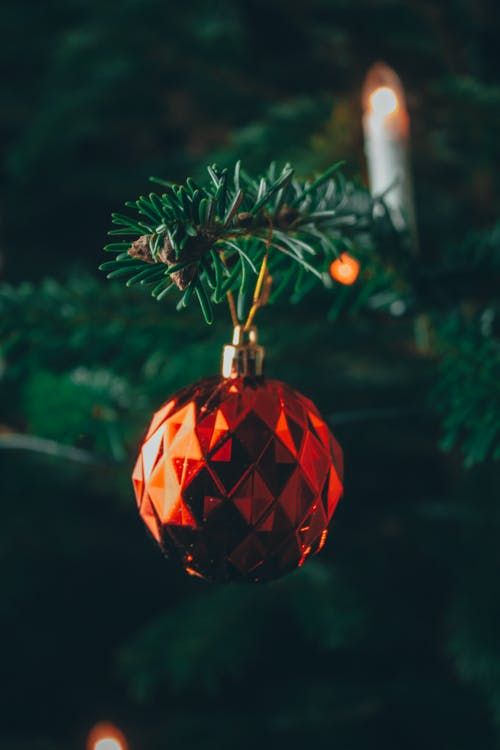 Red and Gold Bauble on Green Christmas Tree