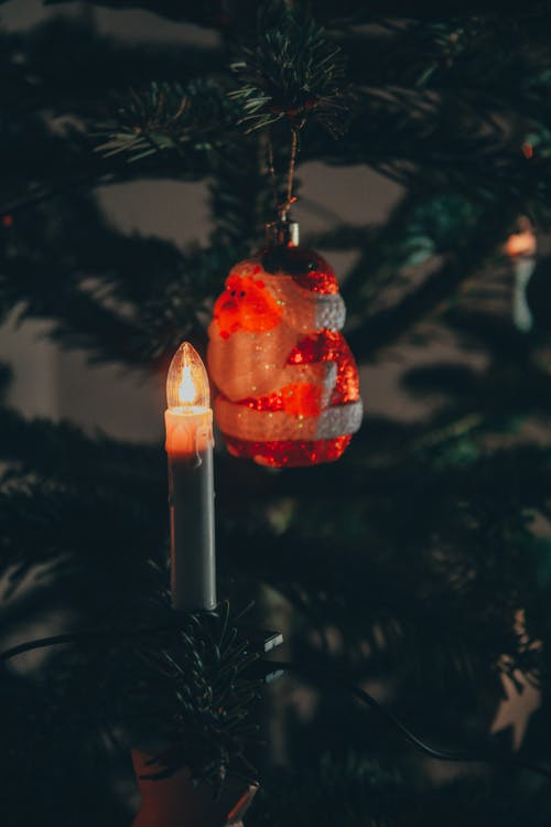 Lighted Candle on Green Pine Tree