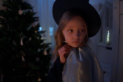 Fotos de stock gratuitas de adentro, árbol de Navidad, capa