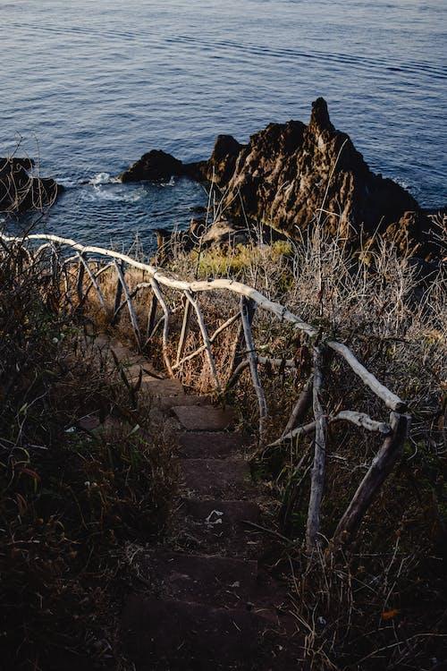 Cerca De Madeira Marrom Na Costa Rochosa Perto Do Corpo D'água