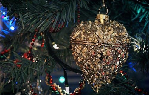 คลังภาพถ่ายฟรี ของ การตกแต่ง, การออกแบบตกแต่งภายใน, กำไล, ของตกแต่งวันคริสต์มาส