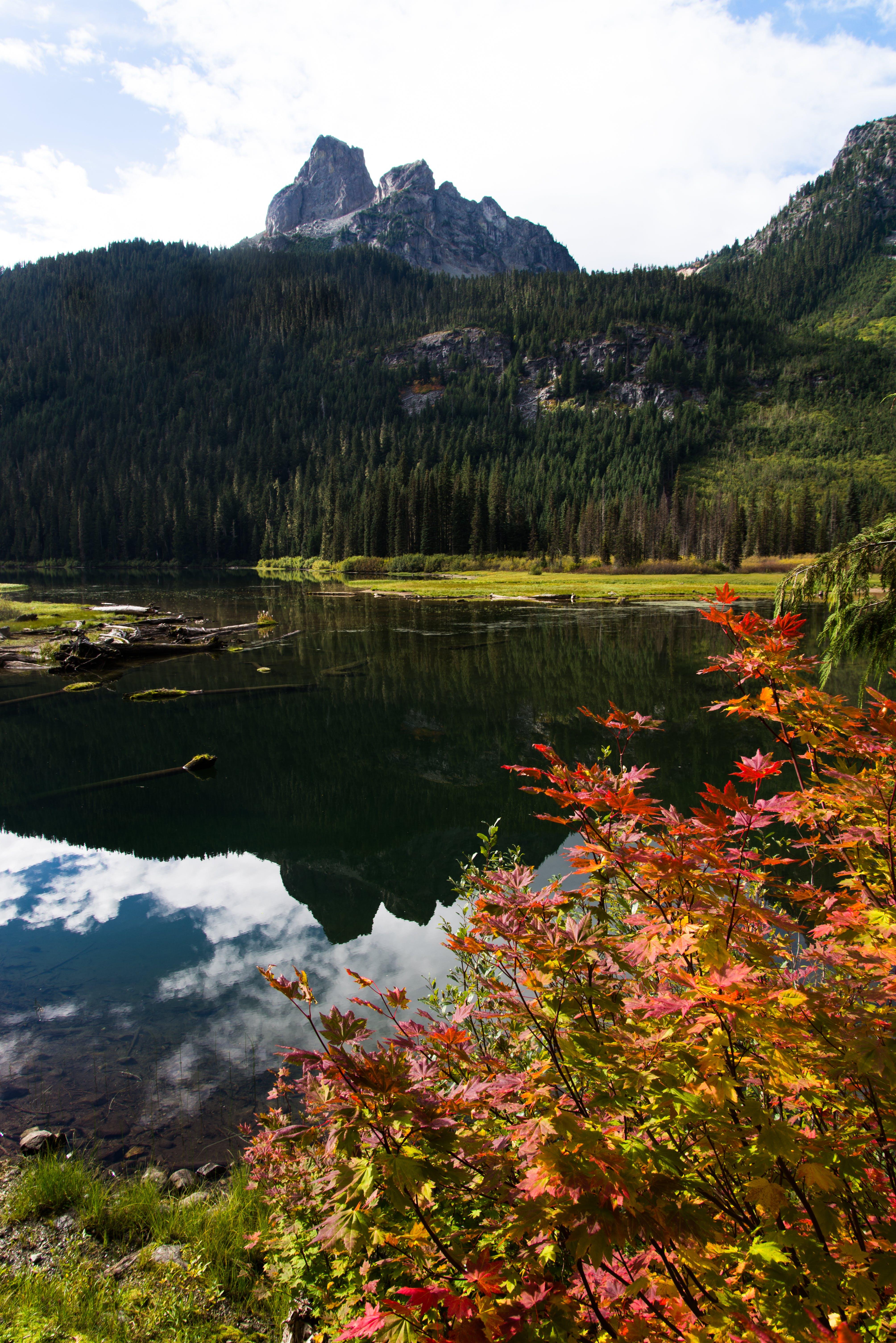 autumn, cascades, fall colors