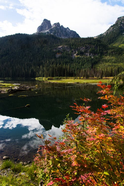 Free stock photo of cascades, fall colors, mountains