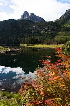 Free stock photo of mountains, autumn, fall colors, cascades