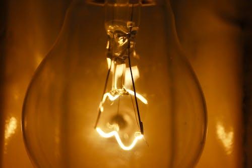 Ảnh lưu trữ miễn phí về bóng đèn thì là