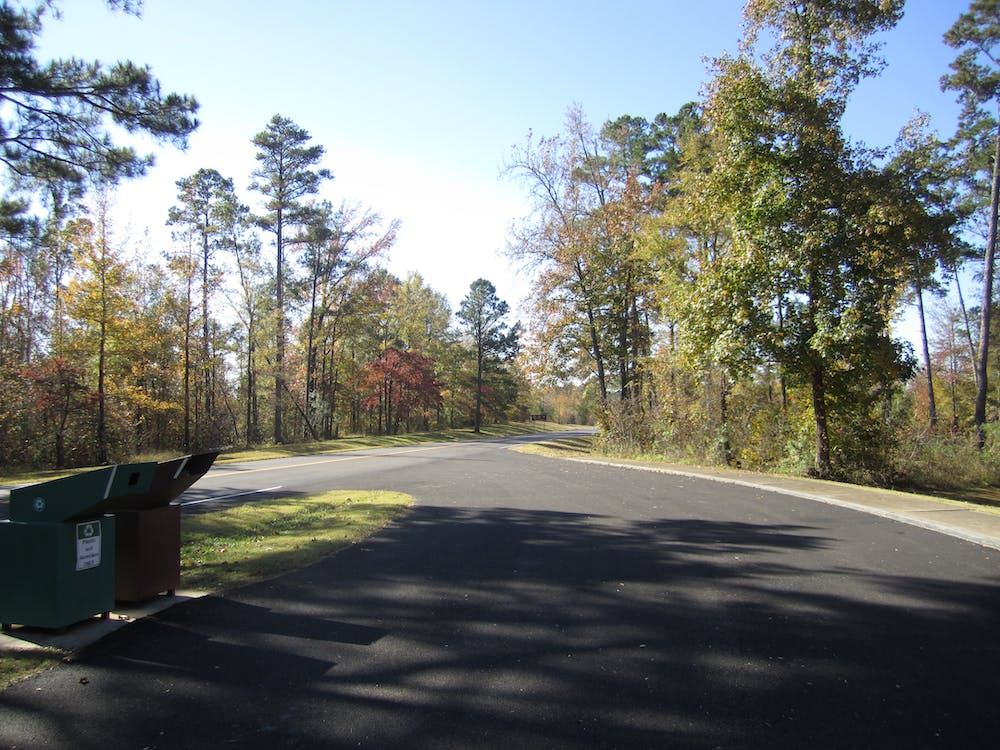 Free stock photo of The Natchez Trace