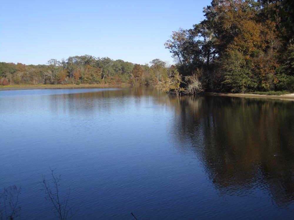 Free stock photo of Ross Barnett Reservoir Mississippi