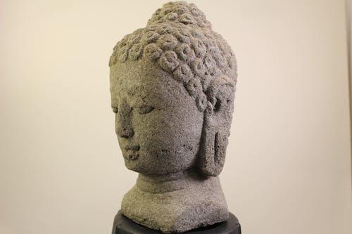Free stock photo of lord shiva, lord shiva songs, lord shiva songs telugu
