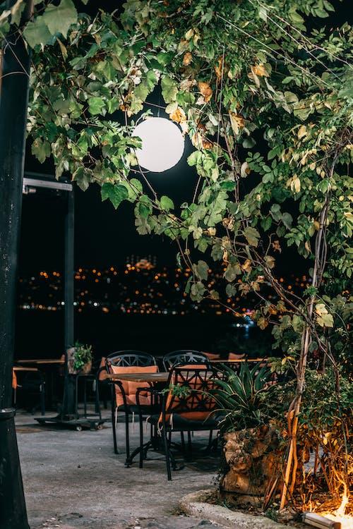 คลังภาพถ่ายฟรี ของ กลางคืน, กลางแจ้ง, การประสาน, ความกลมกลืน