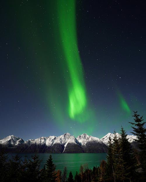 Picturesque scenery of mountain range with green forest under sky with polar lights and stars in winter