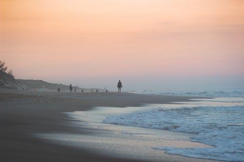 Free stock photo of beach, calm, dame