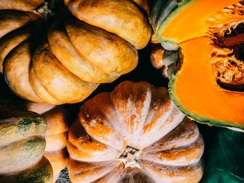 Ripe organic pumpkins heaped on plastic surface