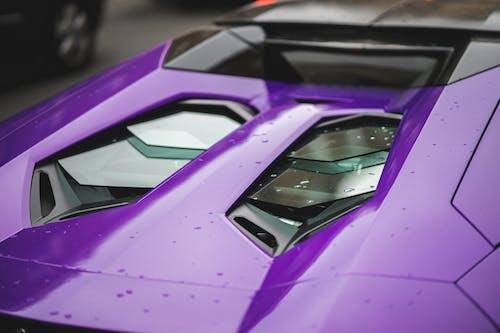Purple and Black Sports Car